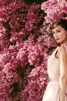 Audrey Hepburn Proud Galleries