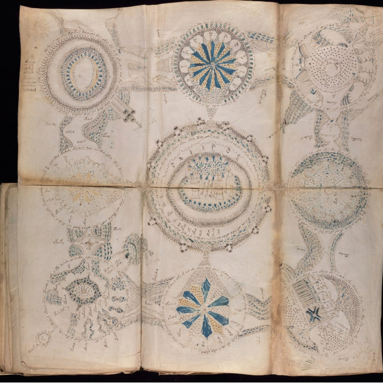 Mysterious Voynich Manuscript Decoded by British Academic