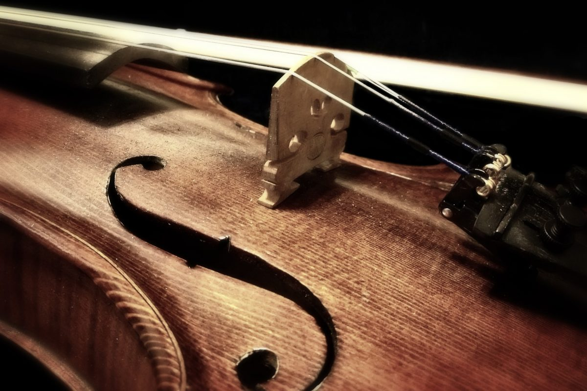 The Art of the Luthier in Creating Timeless Violins