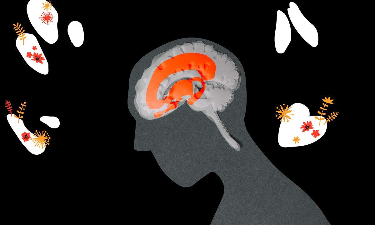 https://www.artsandcollections.com/wp-content/uploads/2020/02/Un-cerveau-qui-palpite.-Mina-Perrichon.-2019-2-1200x720.jpg