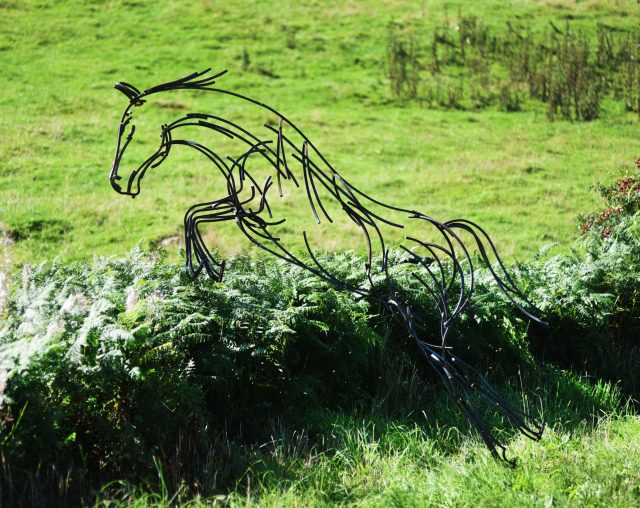 Andrew Kay leaping horse