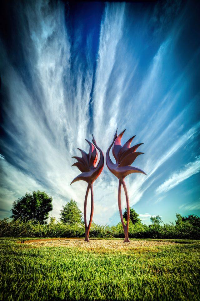 Simon Gudgeon: Dancing Cranes