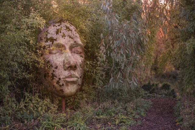 Simon Gudgeon: Leaf Spirit