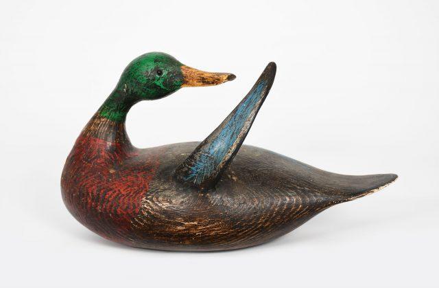 Frink duck