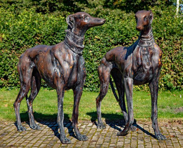 Dreweatts dogs