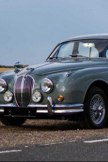 Hawk Classics Jaguar