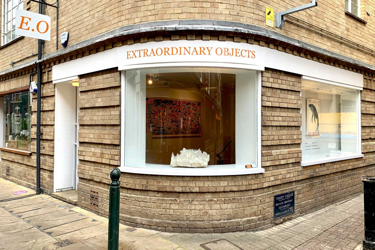 Extraordinary Objects On View in Cambridge