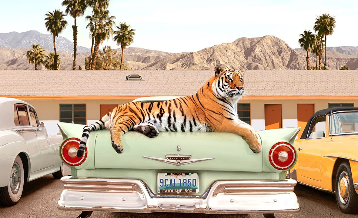 https://www.artsandcollections.com/wp-content/uploads/2021/09/Paul-Fuentes-Tiger-Motel-1181x720.jpg